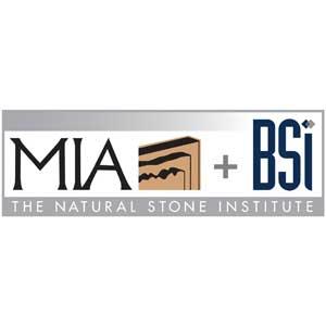 MIA + BSI Logo